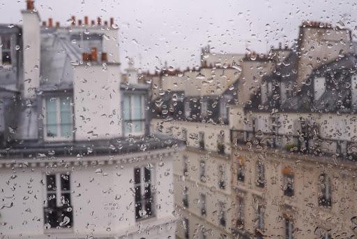 Cơn mưa mùa xuân dấu hiệu đẹp của cuộc đời mới