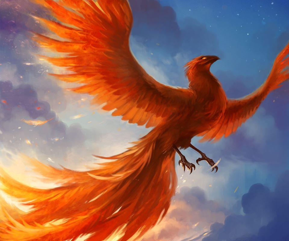 Vậy nằm mơ thấy chim phượng hoàng nên đánh con gì?